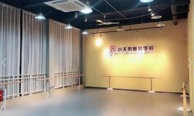 湖北大冶市小天鹅舞蹈学校